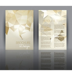 Flyer design with a low poly design vector image vector image