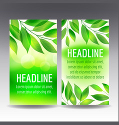 flyer templates with green leaves vector image