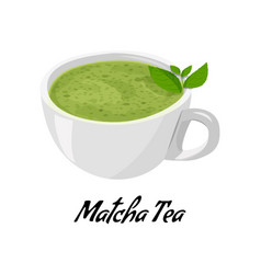 Matcha cup tea isolated on white background vector