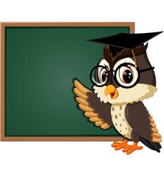 Owl teacher at blackboard vector