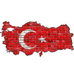 Turkey map on a brick wall vector image
