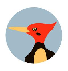 Woodpecker head flat style vector