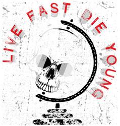 Skull graphic poster vector