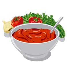 tomato sauce with vegetables vector image vector image