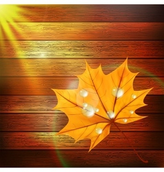 Autumn Leaf template plus EPS10 vector