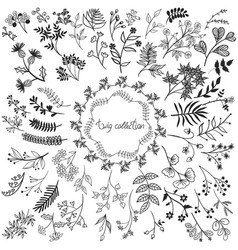 big collection twigs isolated on a white vector image