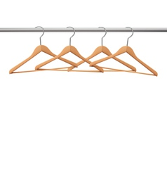 Coat hangers on a clothes rail vector image