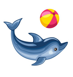 dolphin playing with beach ball vector image