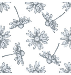 seamless pattern with hand drawn pastel chamomile vector image