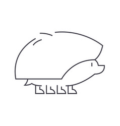 hedgehog line icon sign on vector image