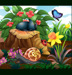 background scene with insects in garden vector image