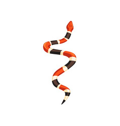 Cartoon milk snake non-venomous creature with vector