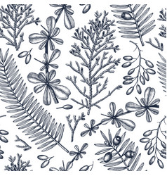evergreen trees seamless pattern vintage vector image