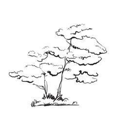 Hand drawn tree vector image