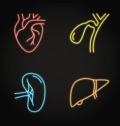 Human internal organs neon icon set in line style vector