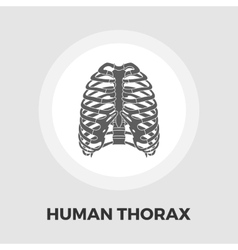 Human thorax flat icon vector