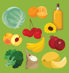 oil fruit vegetables cereals berries vector image