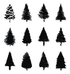 abstract pine trees silhouette vector image