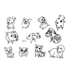 drawing doodle set of dog vector image
