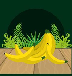 Fresh fruits bananas cartoon vector