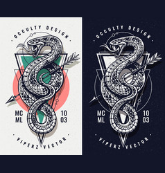 Occult design with snake and geometrics vector