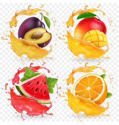 orange watermelon plum and mango juice vector image
