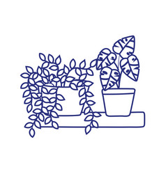 potted plants decoration in shelf isolated icon vector image