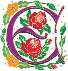 rosette letter E vector image