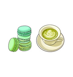 sketch cap of mathca tea macaroni vector image vector image