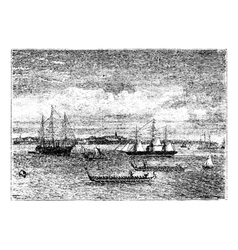 Auckland harbor vintage engraving vector