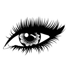 Eye with black long eyelashes vector