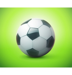 football or soccer ball vector image