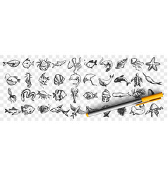 marine life doodle set vector image
