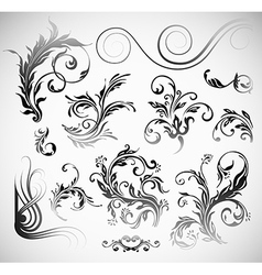 Ornament Flowers Vintage Design Elements vector image vector image