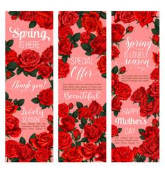 rose flower banner for spring holiday celebration vector image