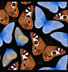 Varicolored butterflies seamless vector