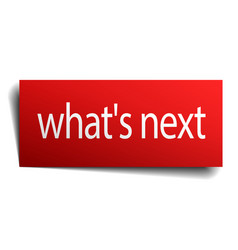 Whats next red square isolated paper sign on white vector