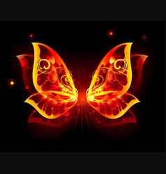 fire wings of butterfly vector image vector image