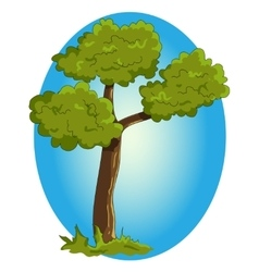 Cartoon green tree on blue background vector image