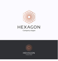 Hexagon rose logo vector