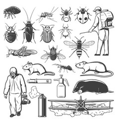 Pest control exterminator insect and rodent icons vector