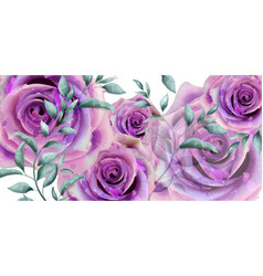 Purple roses watercolor banner beautiful vector