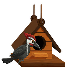 Woodpecker standing on birdhouse vector