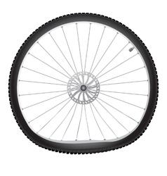 Broken bicycle wheel vector image vector image