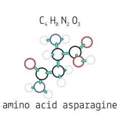 C4H8N2O3 asparagine amino acid molecule vector image vector image