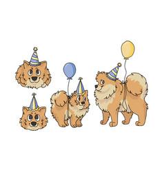 Cute cartoon pomeranian party set clipart vector