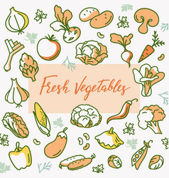 organic vegetable with a place vector image