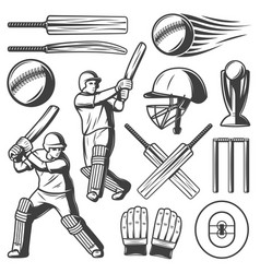 Vintage cricket elements collection vector