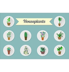 Set of flat icons House plants vector image