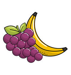 grape and babana fruit icon vector image vector image